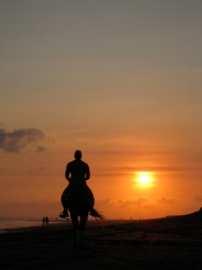 a rider heading towards the sunset...